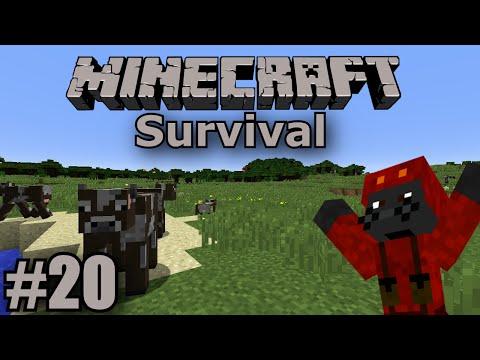 Minecraft - Survival Mode - #20