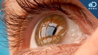 Stem Cell Treatment Cures Blindness