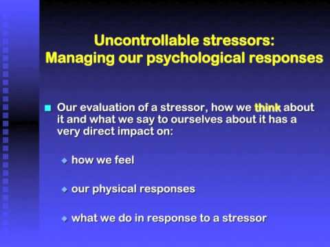 CVSA Stress and Anxiety PPT