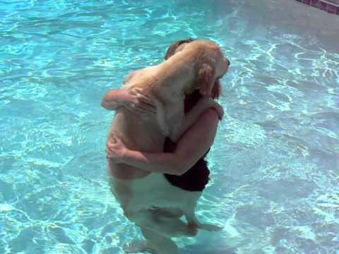 Bentley is Afraid to Swim