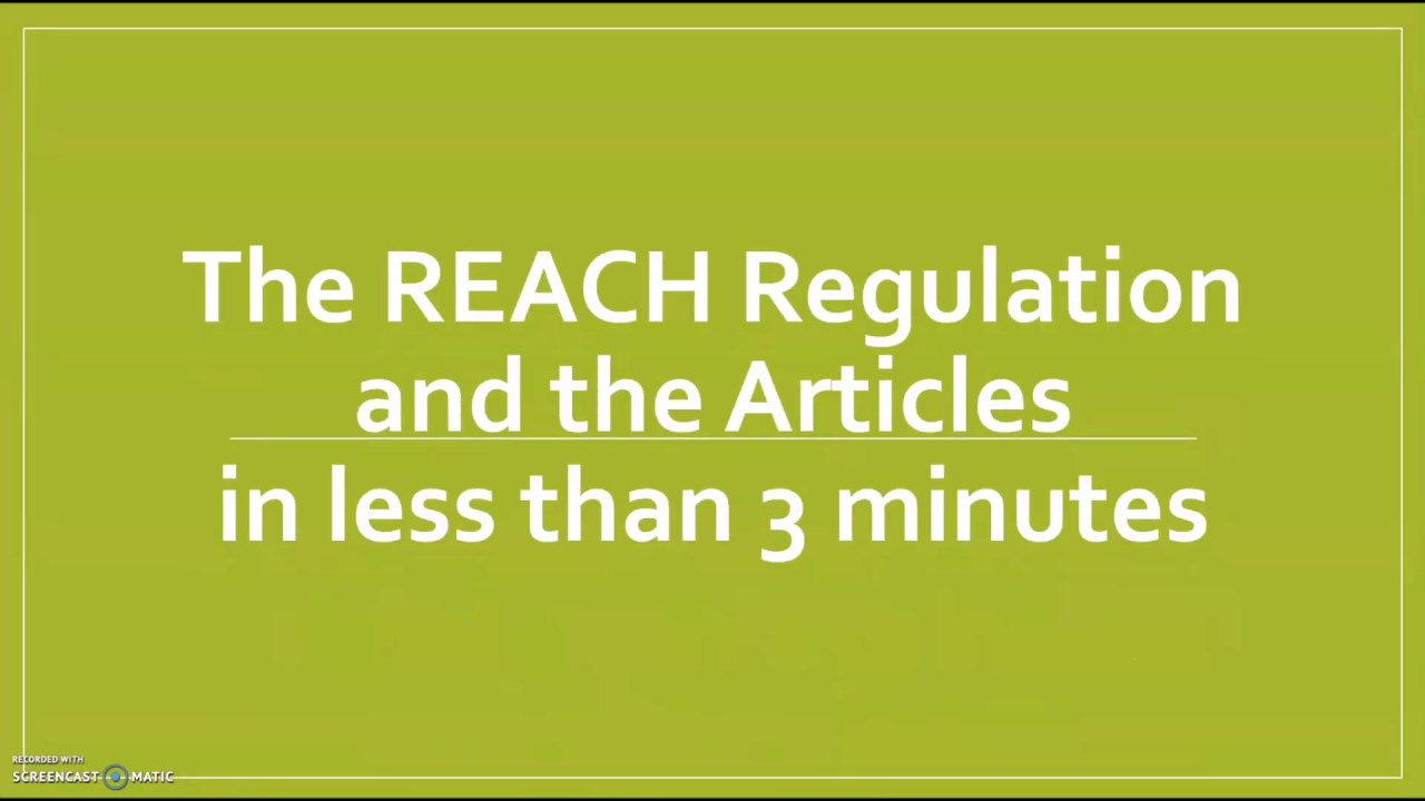 The REACH Regulation and the Articles