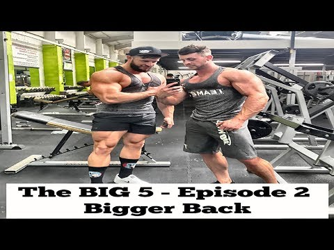 The Big 5 Episode 2 - How To Build A Thicker, Wider Back!