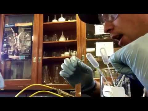 Landmark College - Chemistry - Brian Young - Lab - Making Batteries
