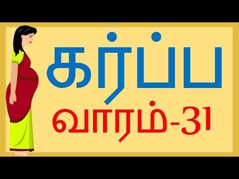 Pregnancy   Tamil   Week by Week   Week 31