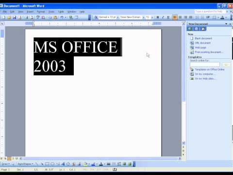 12 MS Office Word 2003 Formatting Font Size