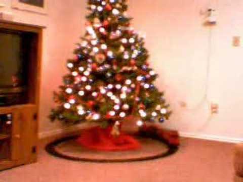 Growing a fake christmas tree!