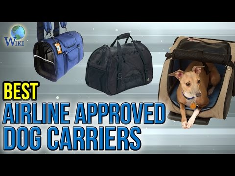 10 Best Airline Approved Dog Carriers 2017