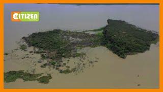 KWS relocate animals from Lonkichari Island in Lake Baringo