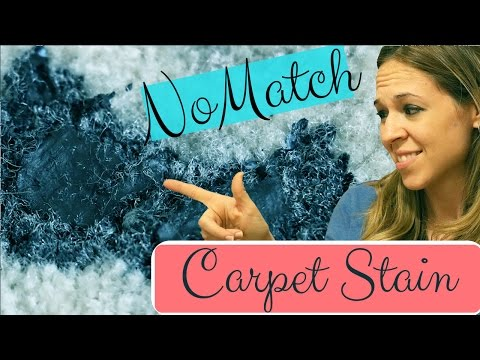 Remove Acrylic Paint Carpet Stain - How to