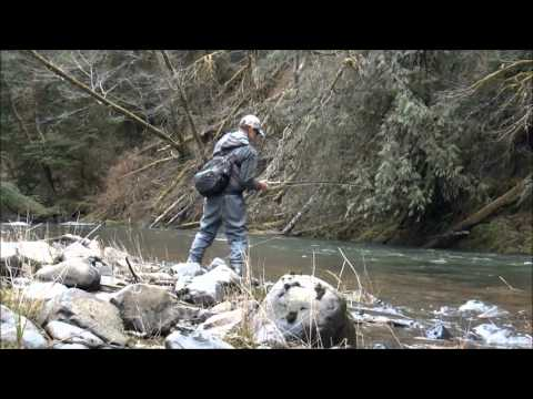 Fly Fishing For Winter Steelhead Oregon 2015   Video Clips