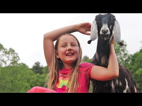 Why These Kids Love Homesteading