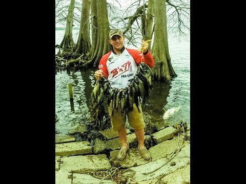 Crappie Fishing for black crappie at Reelfoot Lake, April 12, 2014