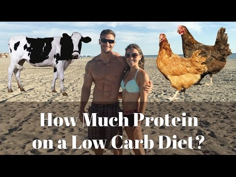 How Much Protein Do You Need on a Low Carb Diet? | Ketosis Protein Requirements- Thomas DeLauer