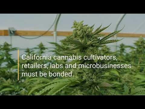 California Cannabis Surety Bonds