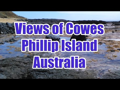 Views around Cowes Phillip Island Australia and a Penguin in the Wild