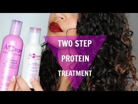 ApHOGEE TWO-STEP PROTEIN TREATMENT| Dry Damaged Natural Hair