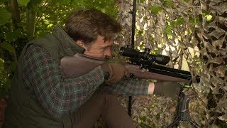 Artemis M16D, Chinese Airguns, Budget Regulator & What do you call a