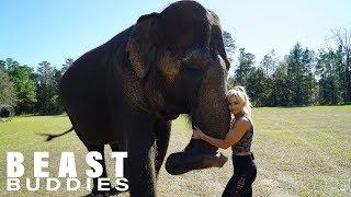 My Best Friend Is An Elephant   BEAST BUDDIES