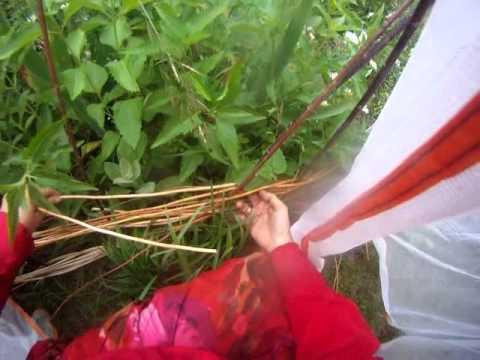 Nancy Today: Weaving a grape vine trellis (basket making tutorial) hacer cesta