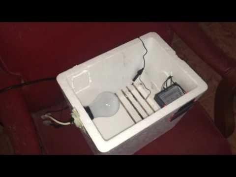 How to make a Homemade Incubator