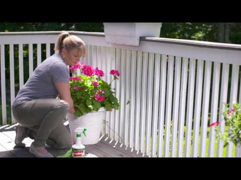 Spray Nine | Heavy-Duty Household Cleaner, Degreaser and Disinfectant