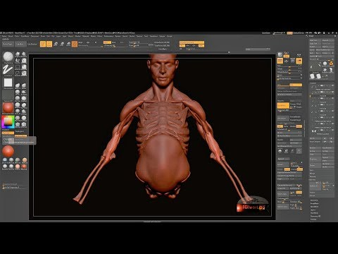 Head and Body Sculpting in ZBrush 4