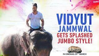 Junglee | Elephantastic Holi | Vidyut Jammwal | 29th March