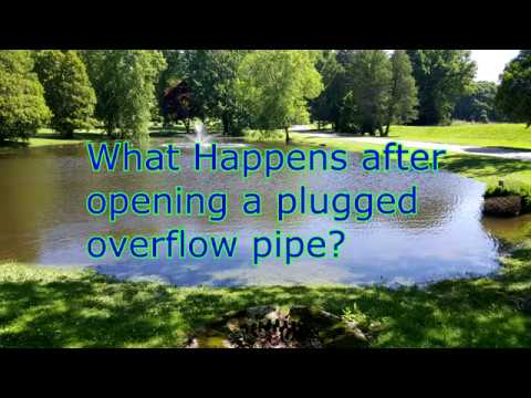 Opening a plugged overflow pipe, pond flooding