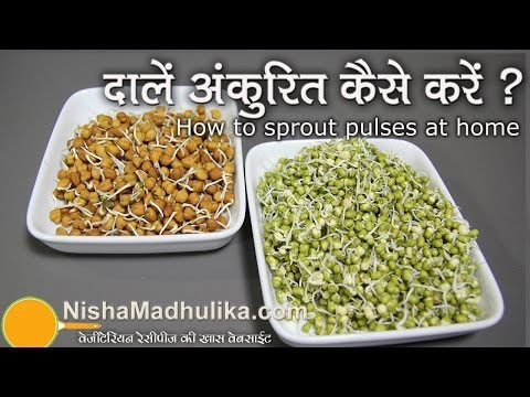 How to Sprout pulses at home |  |  दालों को अंकुरित  करें । How to Sprout Lentils