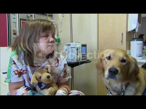 OK:TORNADO-DOGS HELP COMFORT CHILDREN