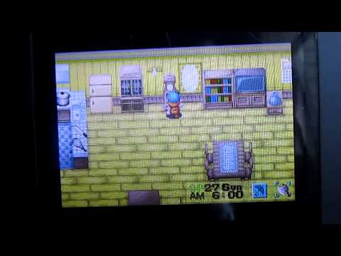 Let's Play Harvest Moon: House Tour.