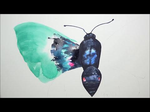 [Watercolor] Aurora X Butterfly
