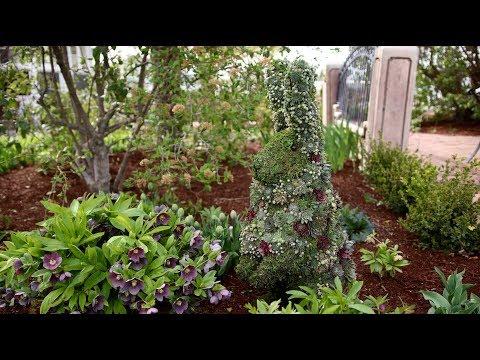Succulent Topiary Bunny!!! 🐰🌵😍 // Garden Answer