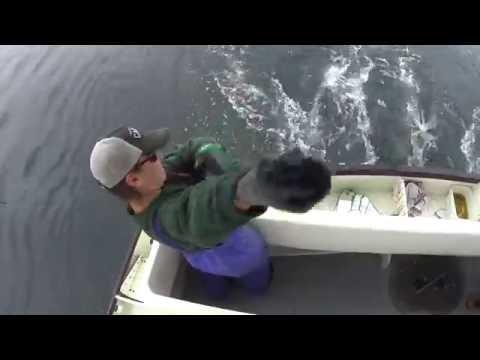 Commercial Fishing in Haida Gwaii