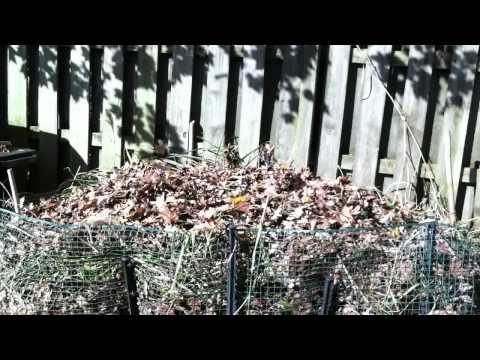 Compost Your Leaves, Autumn Reminder