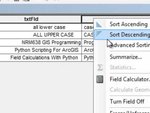 3) Building Python Functions in Arcmap Field Calculator