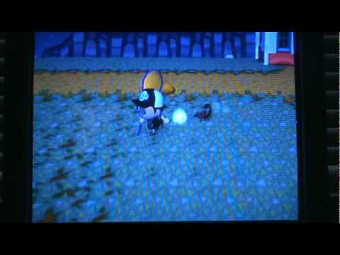 Animal Crossing: City Folk - Four Scorpions At Once!