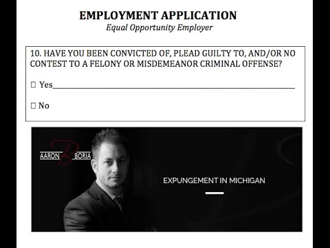 Felony Expungement Michigan