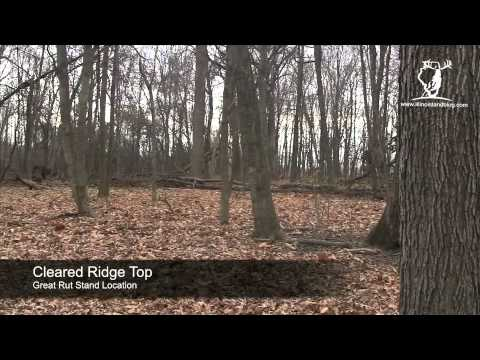 VIP Lake - a 95 Acre Tract at Otter Creek - hunting and fishing land for sale in Illinois