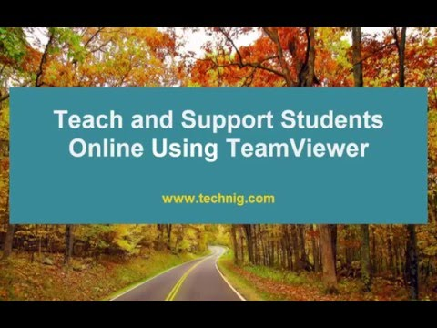 How to Teach and Support Online with TeamViewer?