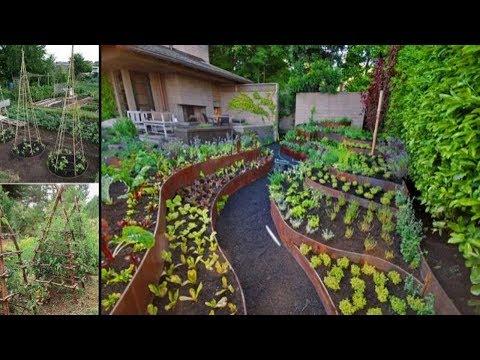 50 Vegetable Garden Design Ideas For Backyard