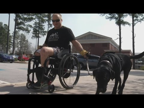 Certified Service Dogs Are Giving Veterans Their Freedom Back