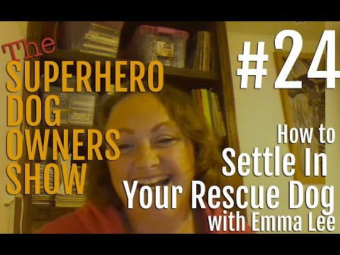 SHDOS Episode 24 - How to settle in your rescue dog with Emma Lee