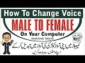 Best Voice Changer - How To Change Voice Male To Female On Your Computer - Hindi/Urdu Tutorial