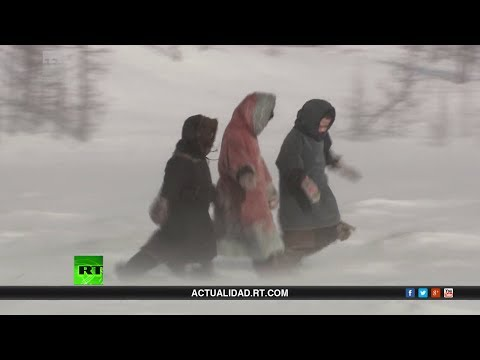 Los niños de la tundra - Documental de RT