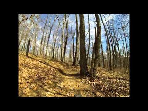 Raccoon Mountain Tennessee Grindstone Ridge MTB Bike Trail