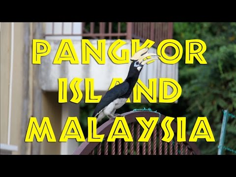 Pangkor Island, Malaysia: AWESOME! -- and then some!