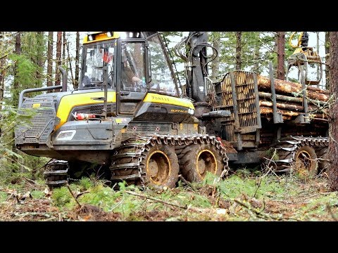 World's Most Amazing Logging Machines In Operation
