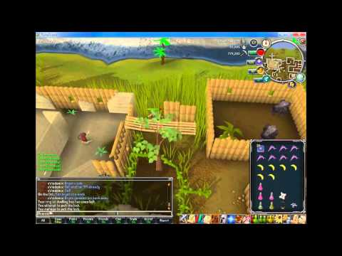 Runescape - Commentary - Monkey Madness Guide [HD]