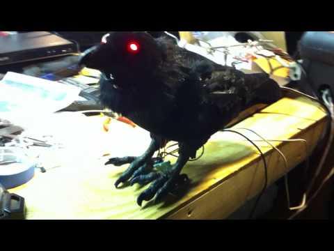HR Animatronic Raven Build #2 - 12.11.11